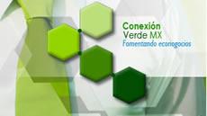 Banner CVMV chico
